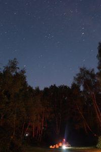 Night Time in The Hollow --by Luke Scrimshaw