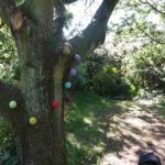 Decorated Tree - with pretty coloured baubles